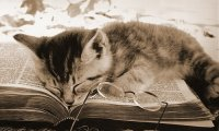 Sleeping Safely