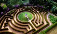 Alice passing trough the labyrinth