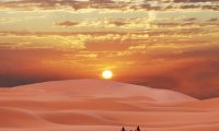 http://www.ambient-mixer.comDesert Journey with Camels and Drum Stings