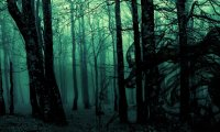 http://www.ambient-mixer.comLost in a dark fantasy forest