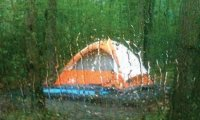 Camping in the forest on a stormy night
