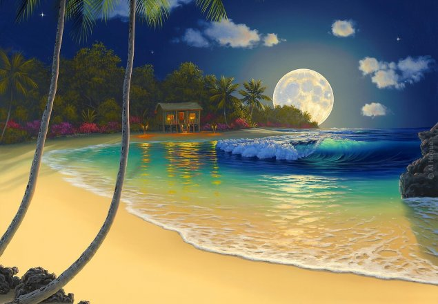 Tropical Island Beach Ambience Sound: Tropical Island At Night Audio Atmosphere