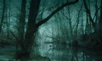 Horror swamp