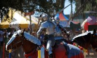 Summer Day at the Renaissance Festival