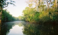 Backwater Expeditions nature sounds