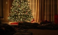 http://www.ambient-mixer.comSleeping Under the Christmas Tree