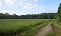 Traveling open field