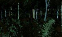 Jungles of Chult - Night #2