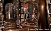 Studying for OWLS in Hogwarts library