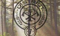 District 7 - Lumber